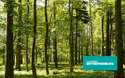 EcoTree digitalise et vend les forêts