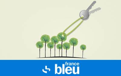 L'œil du web - Investir dans un arbre pour préserver la biodiversité